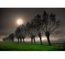 Fairy tales willows #1 Photographic Print