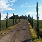 Tuscan Countryside by Danielle Reier