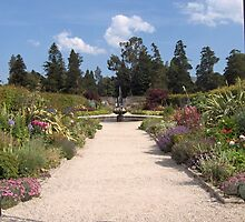Lane in the walled garden in Powerscourt by Riihele
