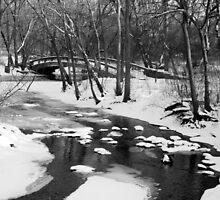 River Through Winter by keleka656