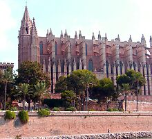 Palma Cathedral by Tom Gomez