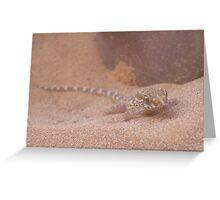 Sand Gecko Greeting Card