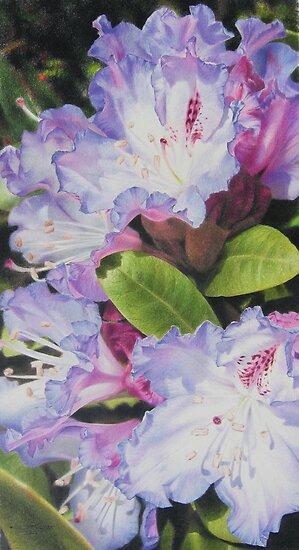 'Rhododendron' by Heidi Schwandt Garner