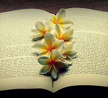 Frangipanis On A Book by Evita