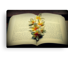 Frangipanis On A Book Canvas Print