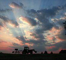 Haulin' Hay by Patricia Montgomery