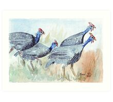 Guinea fowl in my garden Art Print