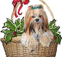 Lhasa in Christmas basket by IowaArtist