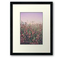 Floral Sunset Framed Print
