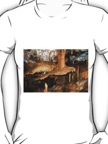 Stalactites, Buchann Caves T-Shirt