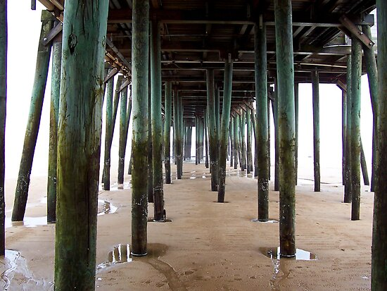 under the boardwalk by Roslyn Lunetta