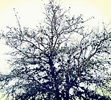 the dustbunny tree by blacksesameseed