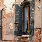 Weathered Window by Danielle Reier
