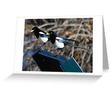 the two magpie greeters Greeting Card