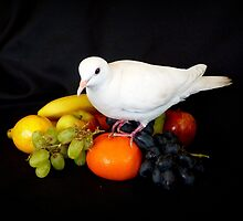 Have You Had Your 5 + A Day - White Dove & Fruit - NZ by AndreaEL