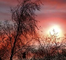A New Sunrise A New Day by Alan Findlater