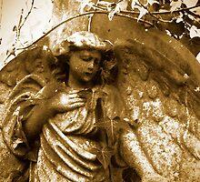 Angel My Angel by Rob Smith