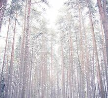It's cold outside by monography