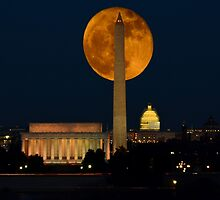 Hunters Moon - Washington D.C. by Matsumoto