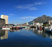 Table Mountain from the Water Front by Craig Wilson