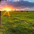 Rural Sunset... by Chris Kean