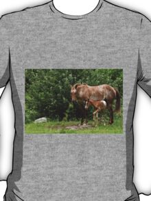 Mother And Son T-Shirt