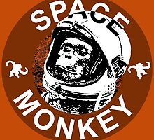 Space Monkey - Ring by cpotter