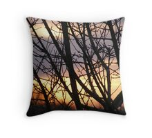 country view Throw Pillow