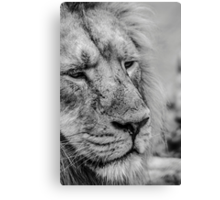 Face Of Thought Canvas Print