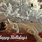 Ginger Cat Happy Holidays by Jane Neill-Hancock