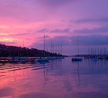 Mystical Morn - Middle Harbour , Sydney Australia by Philip Johnson