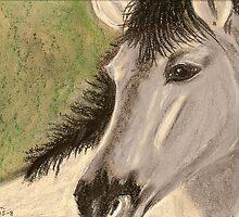 Wild Pony by Dawn B Davies-McIninch