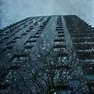 Snow series Tower Block by Citizen