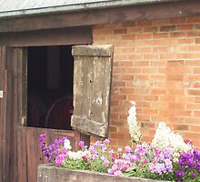 Winery cellar door by Prue Pisani