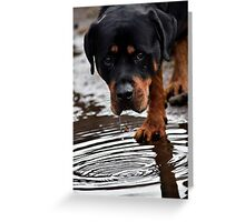 I needed that! Greeting Card