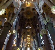 Barcelona - Sagrada Familia by Andrea Mazzocchetti