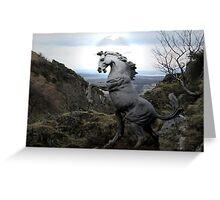 A Wild Stallion Greeting Card