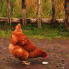 Chicken by Troy Spencer