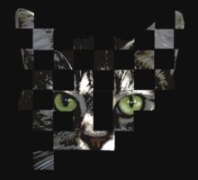 cat checkers 2 by picketty