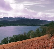 View over Loch Tummel by paul boast