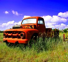 Old Broken Down Truck by Mark Janes
