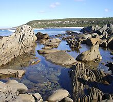 """Rockpool at the """"Sewer"""" by BrettH"""