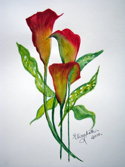 Callas with leaves by Elizabeth Kendall