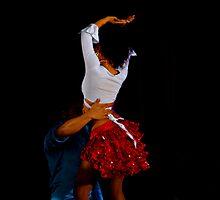 DIRTY DANCING by Cheryl Hall