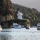 Akaroa harbour, N.Z. by Mike Warman