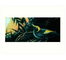 Bowerbird Dawning Art Print