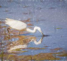 Little Egret (Colour Pencil Effect) by shaftinaction