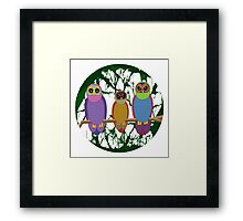 3 Cute Angry Owls on a Branch Framed Print