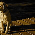 Sitting On The Dock Of The..... by Erika Sturgill