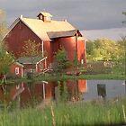 Barn of friends by Lori Durocher